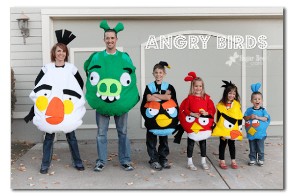 Angry Birds costumes Sugar Bee Crafts