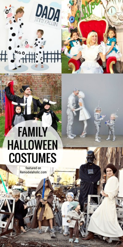 Dress Up With A Theme For Your Whole Family This Halloween! We've Got A Lot Of Fun Family Halloween Costume Ideas To Get You Inspired Featured On Remodelaholic.com