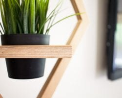 Diy Modern Hanging West Elm Planter