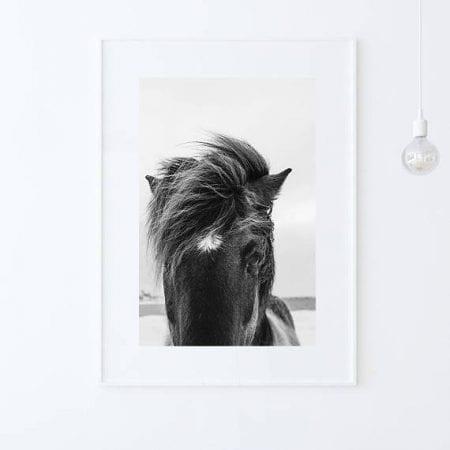 Farmhouse Bedroom 04 Horse Photo