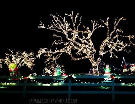 Christmas Lights House 1 WM