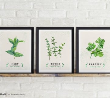 Free Kitchen Printable: Culinary Herb Series