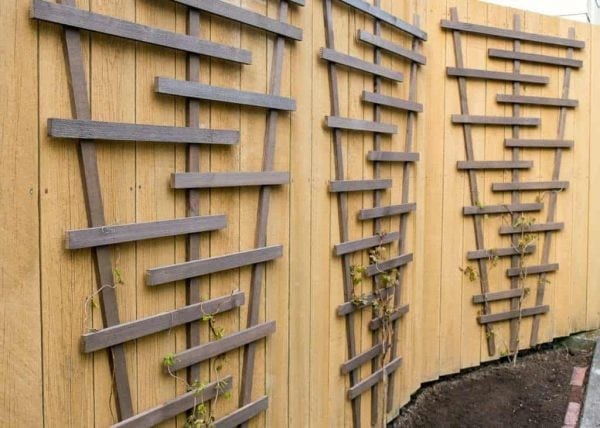 Diy Garden Trellis, The Handyman's Daughter