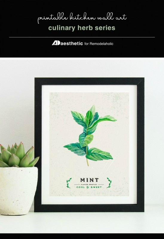 Instant Download PDF, Printable Kitchen Wall Art, Culinary Herb Print Set, AD Aesthetic For Remodelaholic