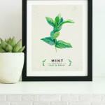 Printable Kitchen Wall Art, Instant Download PDF, Set Of 3 Culinary Herb Prints, AD Aesthetic For Remodelaholic
