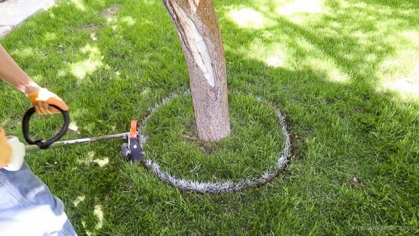 Lawn maintenance, protect your trees, Stihl products from Remodelaholic
