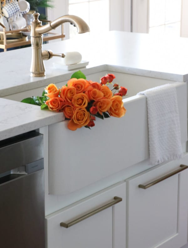 BLANCO IKON APRON SINK FARMHOUSE 4 Sincerely Sara D