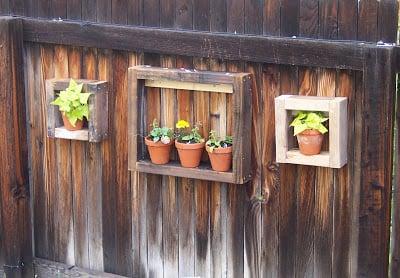 Garden Display Box Frugal Home Designs