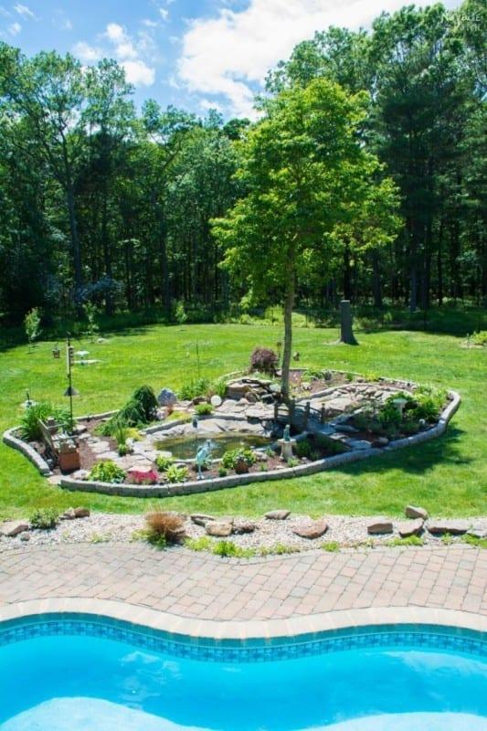 Stunning DIY Backyard Pond By Swimming Pool