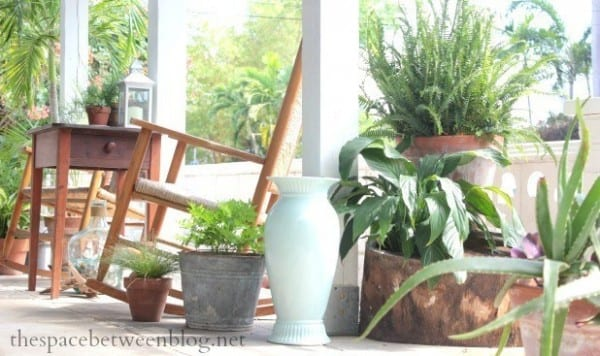 Porch With Wooden Chairs And Table And Countless Green Potted Plants Of Every Variety