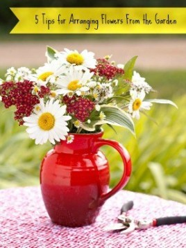 Red Ceramic Pitcher With Daisies, Red Berries, And Greenery Arrangement On An Outdoor Table