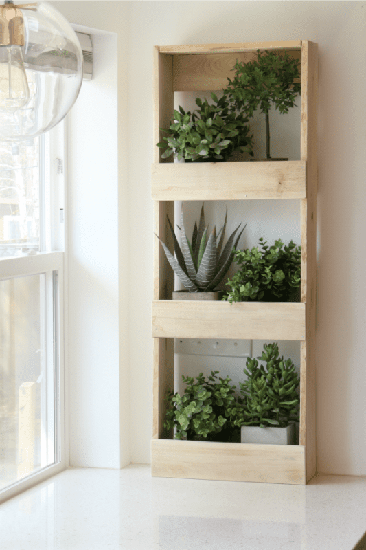 Wall Bins With Plant Shelves For Greenery In Your Home