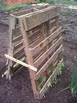 DIY Vegetable Garden Ideas Easy Pallet Trellis For Vertical Gardening, Featured On Remodelaholic
