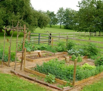 DIY Vegetable Garden Ideas For Raised Garden Beds And A Bean Trellis, Featured On Remodelaholic