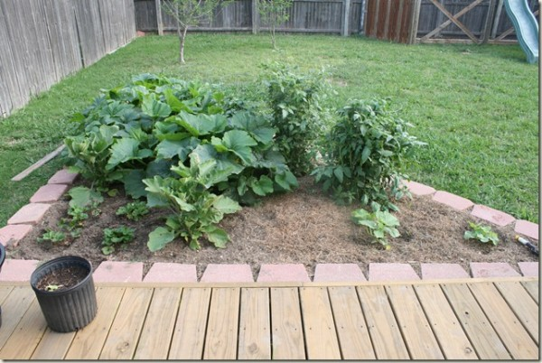 DIY Vegetable Garden Ideas Triangle Garden Bed For Square Foot Gardening, Remodelaholic