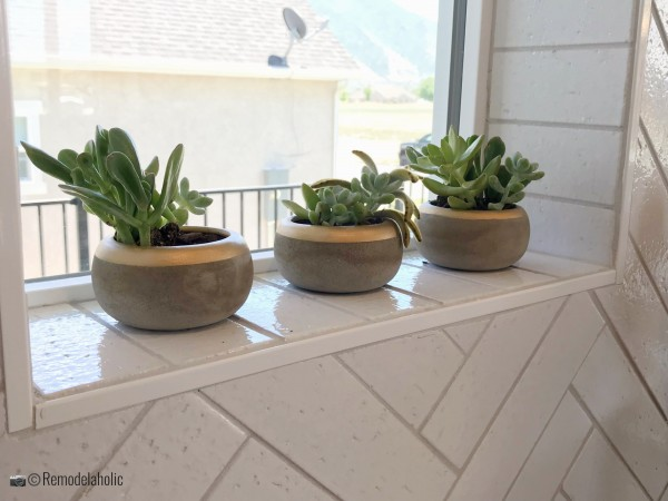Set of three succulents in pots in the window, UVPH 2018 Home 8 Greentech Construction, Design Hintz Interior Desi, Photo by Remodelaholic