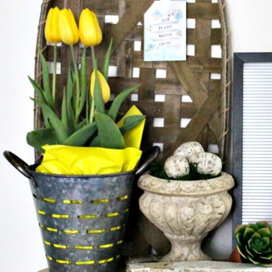 Spring Decor, Yellow Tulips In Metal Basket