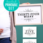 Instant Download Printable Milestone Card Set For Pregnancy, Baby, Birthday Photo Shoots And Weekly Monthly Pictures Remodelaholic