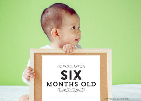 Printable Baby Milestone Cards For Easy Monthly Baby Pictures, Remodelaholic