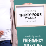 Printable Pregnancy Milestone Cards, Week By Week, Remodelaholic