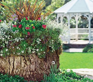 Creative Flower Bed Planter Idea, Tree Stump Container Garden Lowe