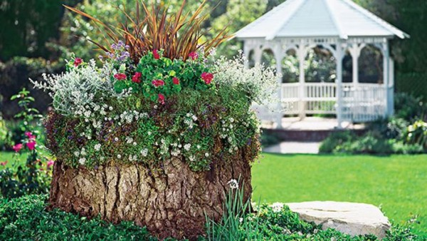 Creative Flower Bed Planter Idea, Tree Stump Container Garden Lowe