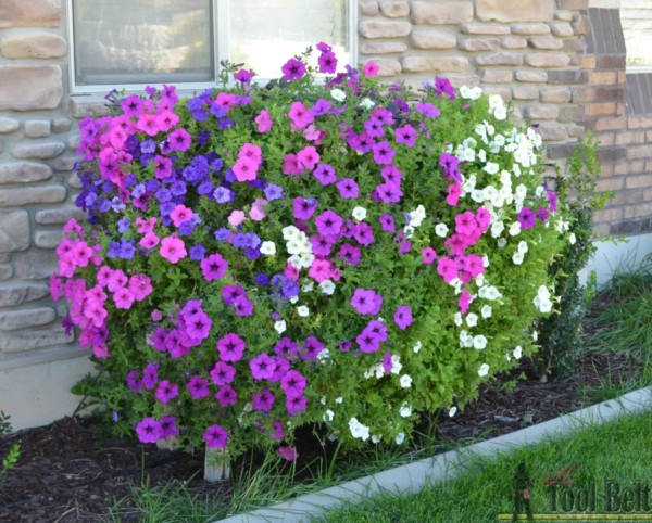 Outdoor Planter Idea, Cascading Flower Planter Box HerToolbelt