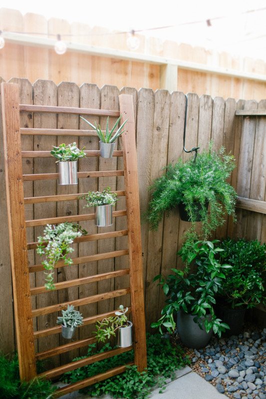 Wooden Ladder For Plants, Sugar And Cloth